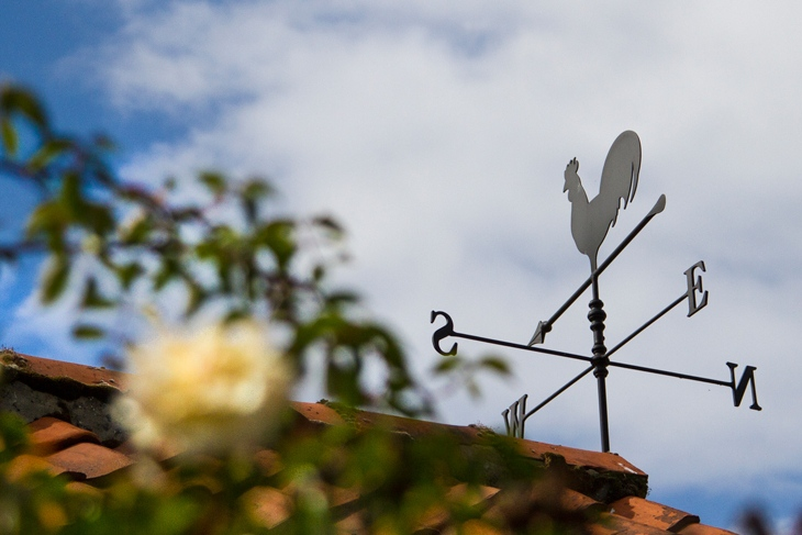 Weather Vane at Ollands Farm Barn in Norfolk