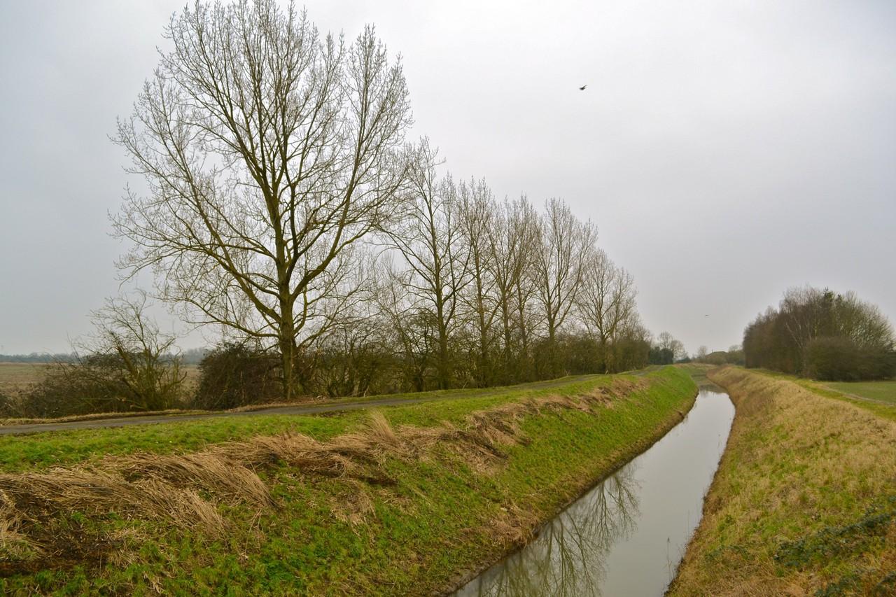 Fenland Drainage Dyke