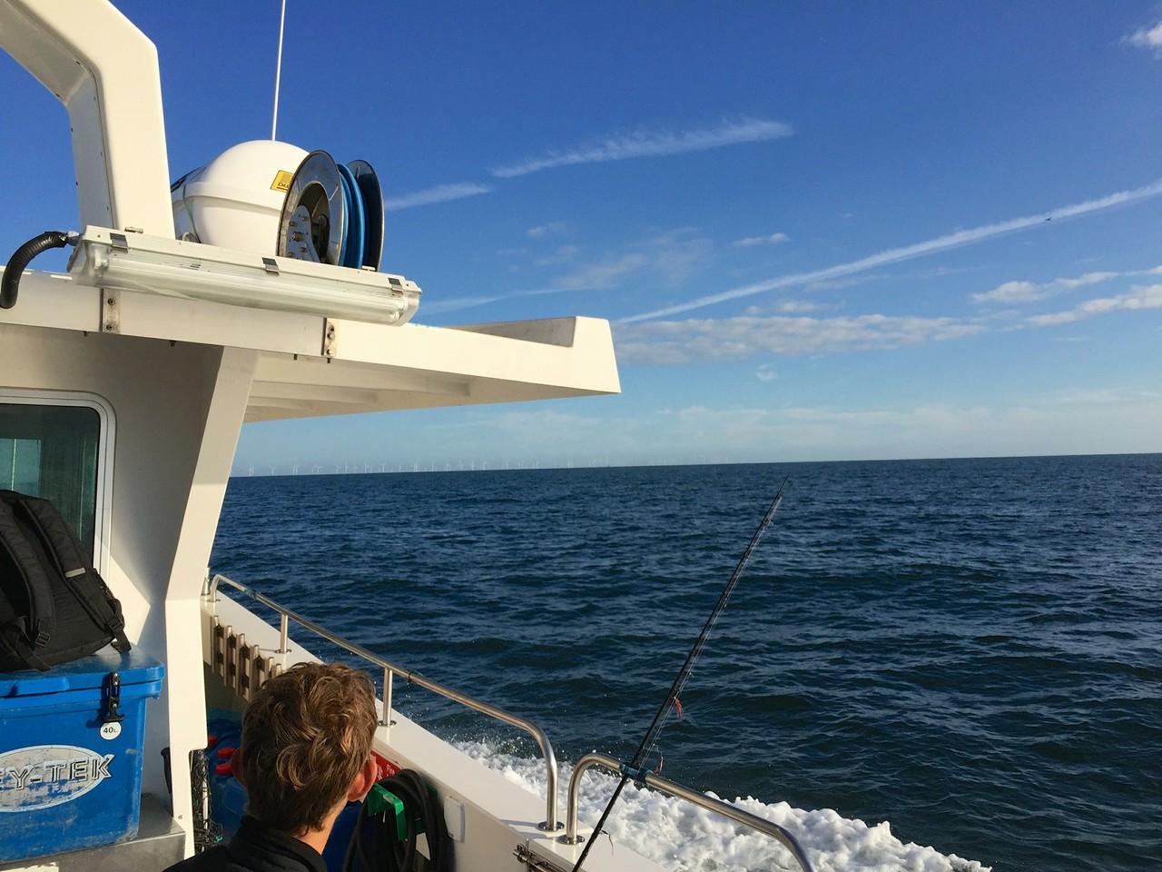 Fishing Mackerel On Board The Katie Louise