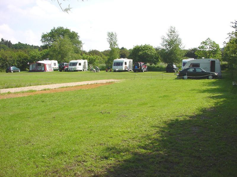 Sunnydene Campsite 1