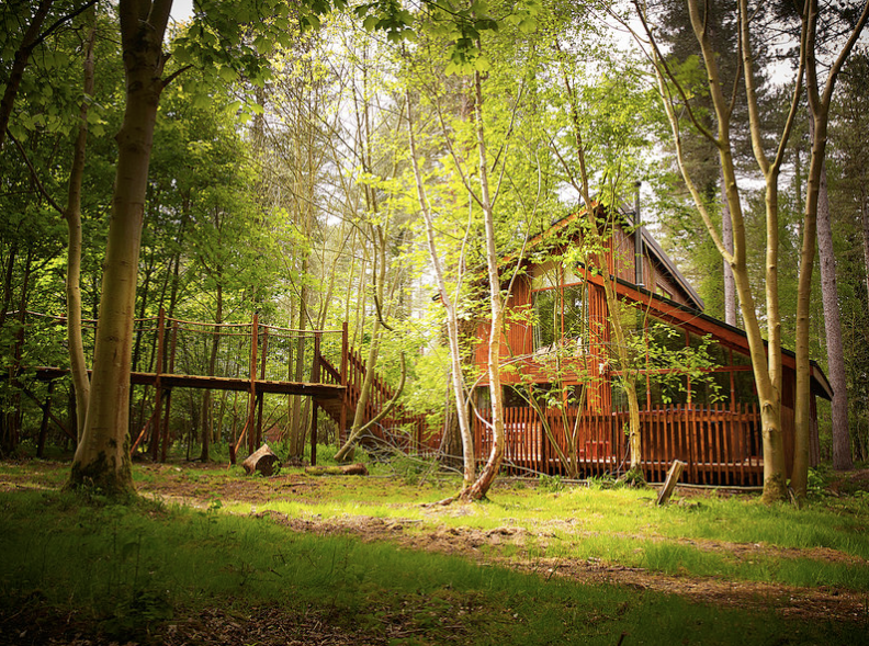 Self Catering at Forest Holidays