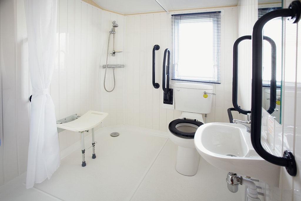 Wild Duck Adapted Bathroom