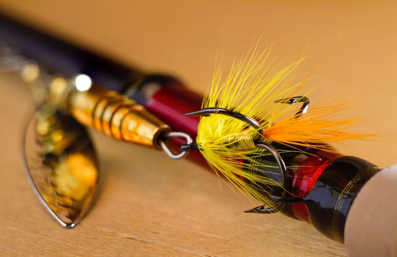 Fishing In Norfolk