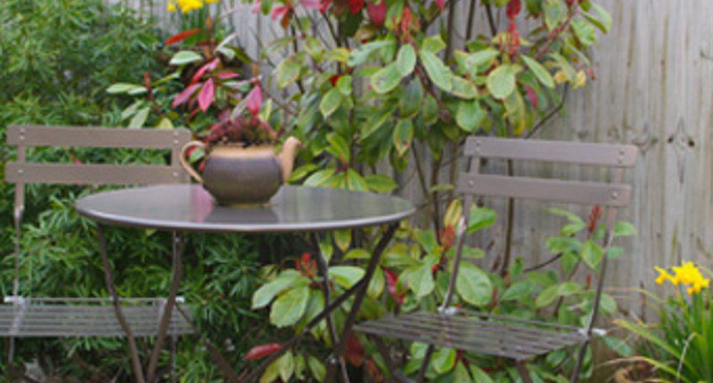 Molly S Den Garden