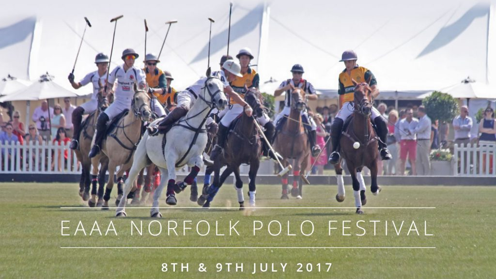 Norfolk Polo Festival