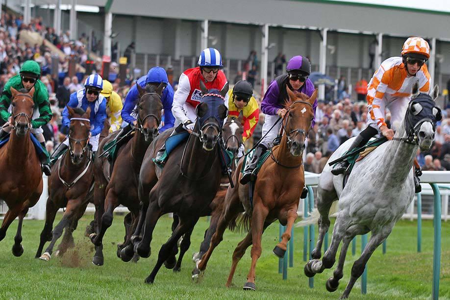 Horse Racing at Great Yarmouth